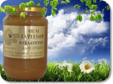 Μέλι ευκαλύπτου